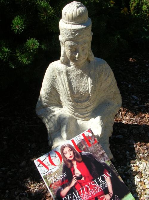 Vogue dans un jardin Zen