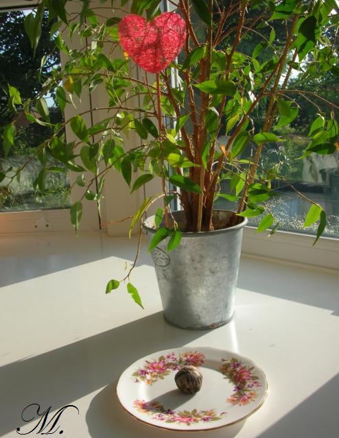 fleur à thé