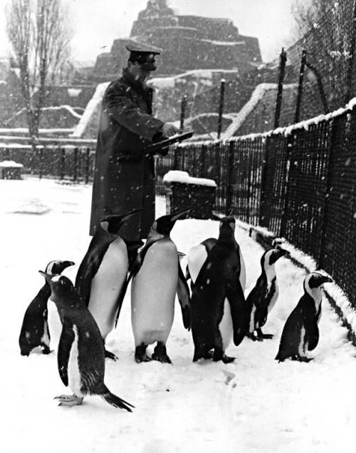 London+snow+-+vintage